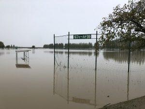 野球場の状況写真